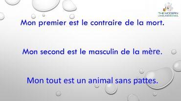 French Advanced Conversation
